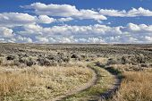 dirt road in sagebrush high desert north of Saratoga, Wyoming, early spring