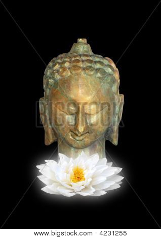 Buddha, Symbol Of Purity