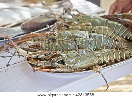 Massive King Prawns Fresh Fish Counter Plated