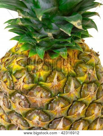Part Ripe Pineapple Fruit