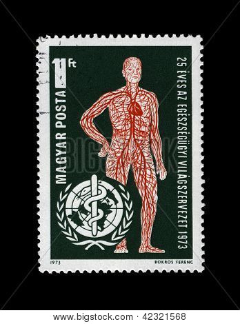 Hungary - Circa 1973: Stamp Printed In Hungary, Shows Vascular System And Who Emblem (25Th Anniversa