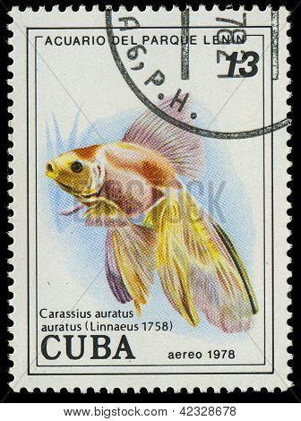 Cuba-circa 1978: A Stamp Printed In Cuba Shows Fish Carassius Auratus, Circa 1978