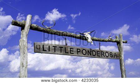 Little Ponderosa