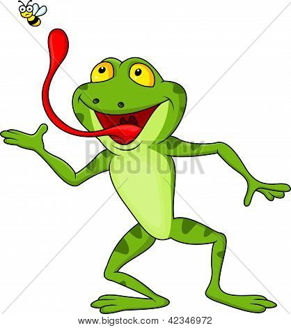Frog cartoon with fly