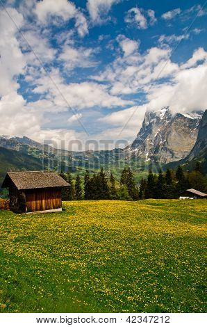 Small Chalet In Flower Meadow, Grindelwald