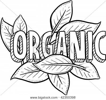 Organic food sketch