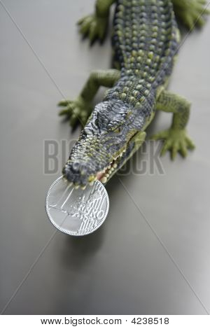 Toy Cocodrile, Aligator With Euro Money In His Jaws