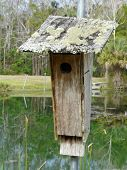 Rustic Birdhouse On Pond