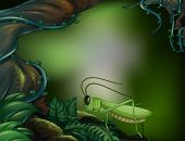pic of head femur  - Illustration of a grasshopper in the forest - JPG