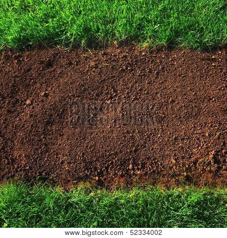Soil And Grass Background