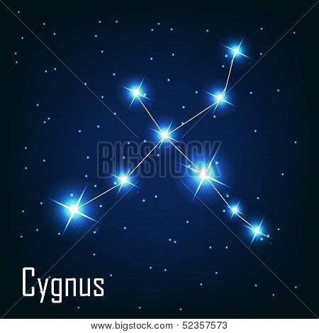 Постер, плакат: The constellation Cygnus star in the night sky Vector illust, холст на подрамнике