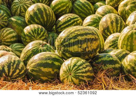 Watermelons Were Piled Up