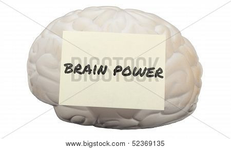 Brain Power With Model Brain To Generate Ideas
