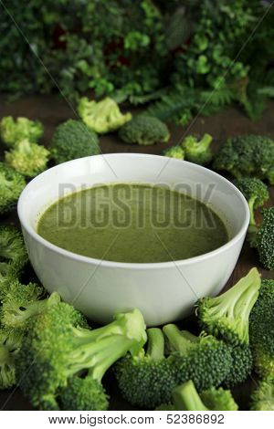Broccoli soup in a white bowl surrounded by fresh brocolis