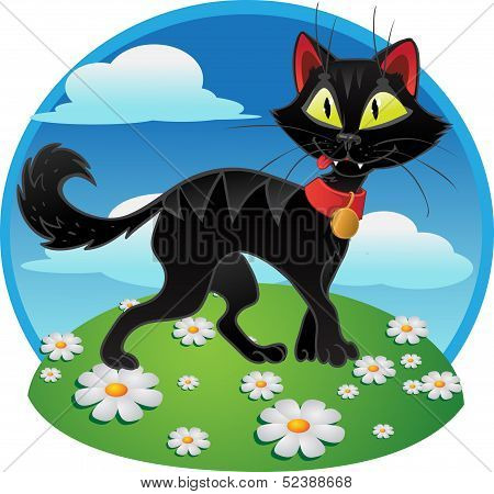 Black fun terrible cat on color background