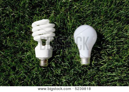 Energy Saving Light Bulb And Incandescent