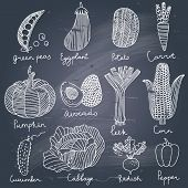 stock photo of flavor  - Tasty vegetables in vector set  - JPG