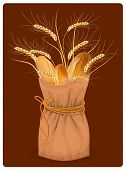Vector paper bag with bread and wheat on dark background