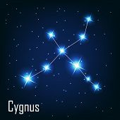 Постер, плакат: The constellation Cygnus star in the night sky Vector illust