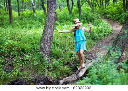 Girl Balancing On A Log