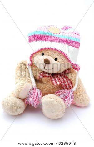 Teddy bear in winter clothes