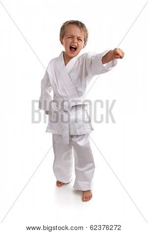 Young boy in a karate suit doing martial arts moves