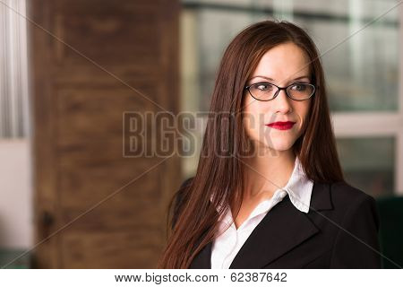 Intellectual Business Woman Female Eyeglasses Smiling Office Workplace