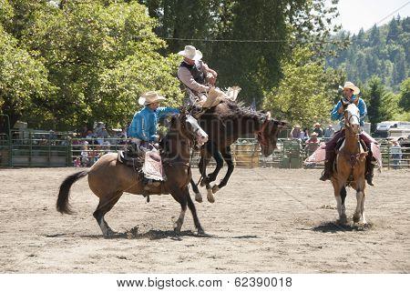 Bronc Ride
