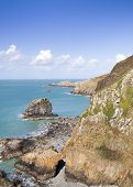 pic of sark  - Coastal scene on Sark looking out over the English Channel