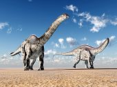 foto of apatosaurus  - Computer generated 3D illustration with the Dinosaur Apatosaurus - JPG