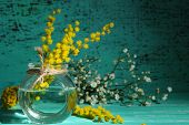 image of mimosa  - Twigs of mimosa flowers in vase on blue wooden table - JPG