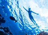 stock photo of sea fish  - Active woman diving in the sea and enjoying wild nature - JPG