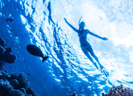 image of sea fish  - Active woman diving in the sea and enjoying wild nature - JPG