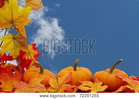 Colorful Fall Border