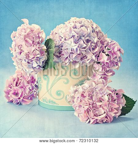 still life with hydrangea flowers