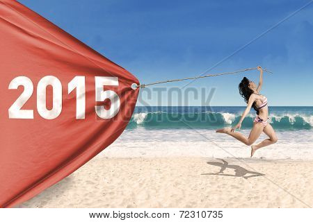 Pretty Girl In Bikini With Banner New Year