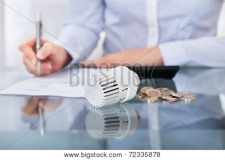 Businessperson Analyzing Invoice