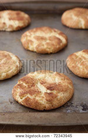 Fresh Baked Snicker Doodle Cookies