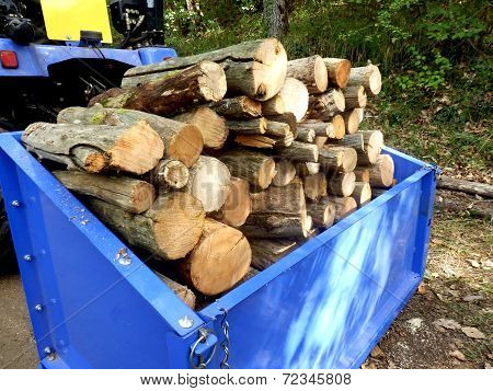 Logs for the fire