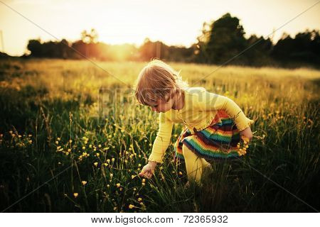 cute little girl on meadow