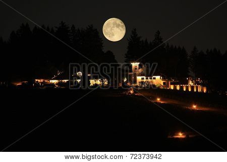 Oregon Vineyard And The Harvest Moon
