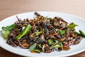 picture of insect  - Fried edible insects mix on white plate with green lime leaves on wooden table - JPG