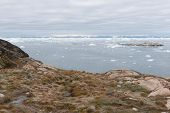 picture of arctic landscape  - Arctic landscape in Greenland around Ilulissat with icebergs and mountains - JPG