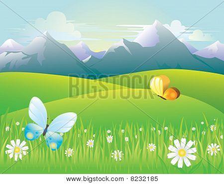 Mountain meadows at dawn