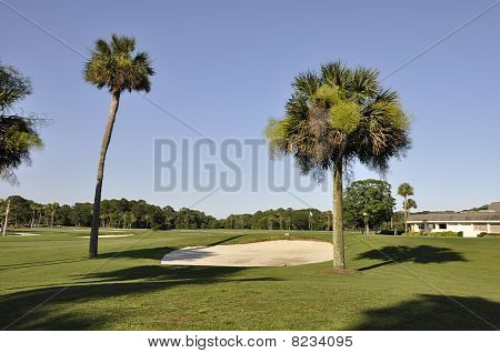 Golf Course In Late Afternoon