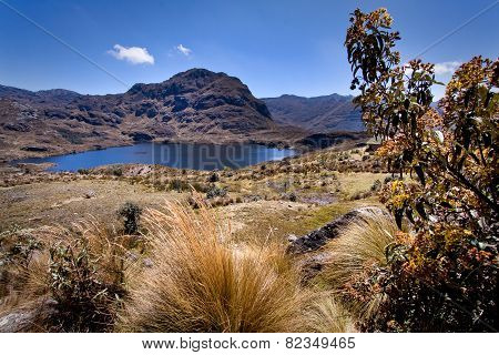 lanscape in Cajas National Park Azuay Ecuador South America