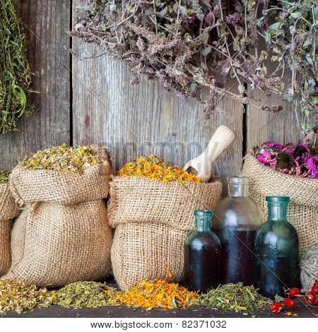 Healing Herbs In Hessian Bags And Bottles Of Essential Oil Or Tincture Near Rustic Wooden Wall, Herb