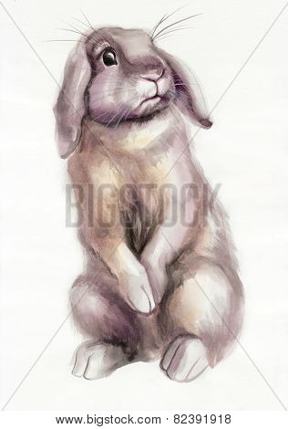 Brown Rabbit Watercolor Painting