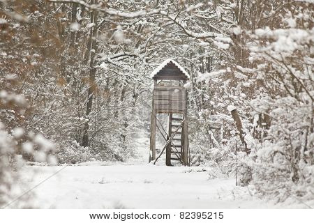 Hunting Tower On Snow