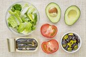image of romaine lettuce  - top view of sardine salad ingredients  - JPG
